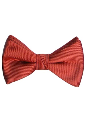 Picture of REFLECTIONS CINNAMON BOW TIE