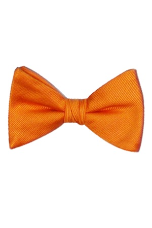 Picture of REFLECTIONS TANGERINE BOW