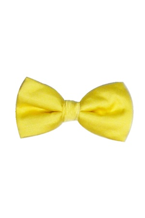 Picture of REFLECTIONS YELLOW BOW